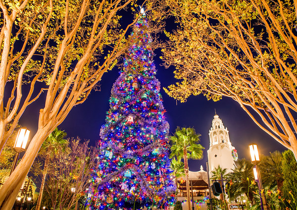 carthay-circle-christmas-tree-m